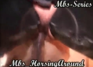 Nasty MILF is obsessed with horse cocks